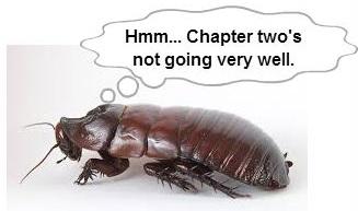 cockroach2